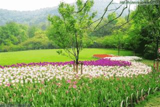 视觉摄影:杭州哪里拍婚纱照好 杭州婚纱照取景地Top5